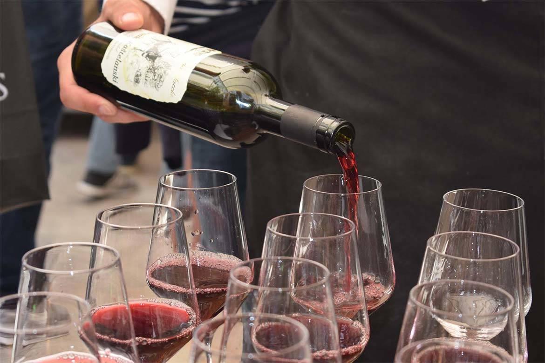 wine tasting split 5