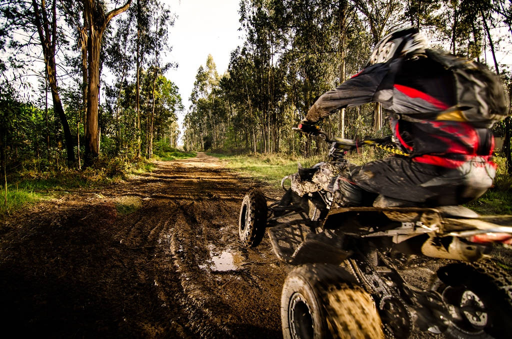 Quad Biking Safari incl. Private Strip Show